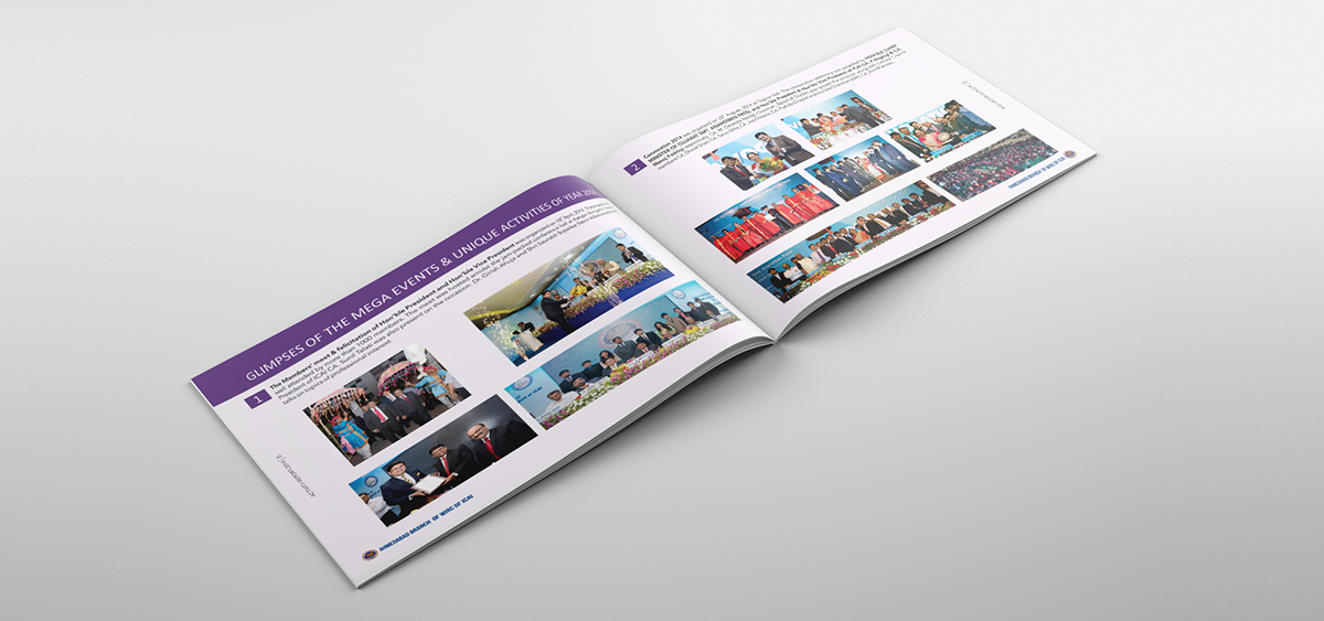 CA Annual Report Inside